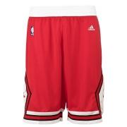 Bulls Short Swingman