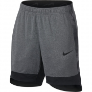 Nike Dri-Fit Elite Short Dam