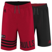 Bulls Rev Short Jr